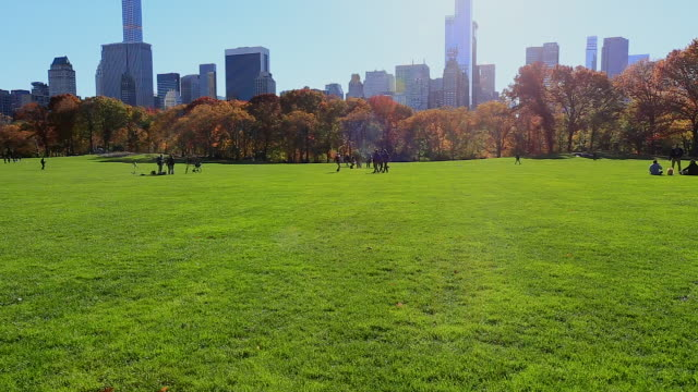 tu sun shines from above the manhattan skyscrapers and autumnal trees at sheep meadow at central park. - sheep meadow central park stock videos and b-roll footage
