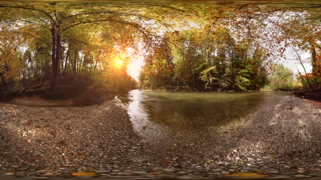 360 VR, sun shining through trees in forest at mangfall river in autumn