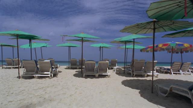 stockvideo's en b-roll-footage met ms, sun umbrellas and empty beach chairs  facing ocean on surin beach, phuket, thailand - waaierpalm