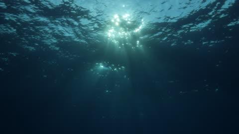 sunbeam shining through sea surface underwater, maldives - water surface stock videos & royalty-free footage