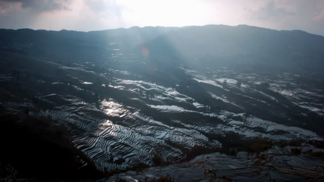 sunbeams drift over rice paddy terraces, yuanyang, yunnan, china - rice terrace stock videos and b-roll footage