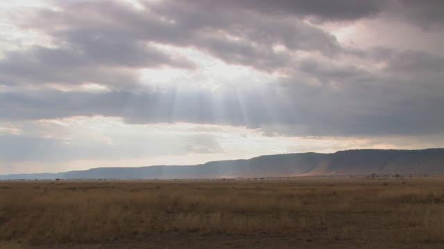 WS, PAN, Sunbeams shining through clouds over savanna, Masai Mara, Kenya