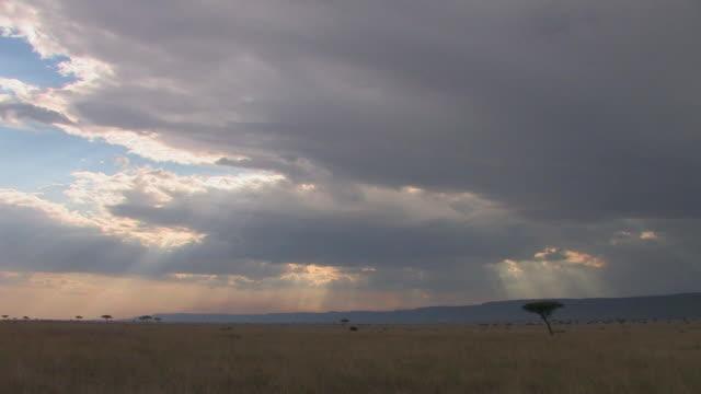 WS, Sunbeams shining through clouds over savanna, Masai Mara, Kenya