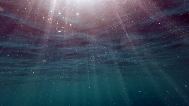 sunbeams streaming through the ocean surface underwater point of view of the sea - undersea stock videos & royalty-free footage