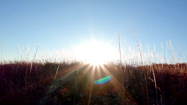 Sunburst lens flare in fall Summit Steens Mountain Near Malhuer Wildlife Refuge 9
