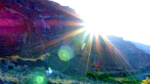 sunburst lens flare pan john day river cottonwood canyon oregon 36 - cottonwood tree stock videos and b-roll footage