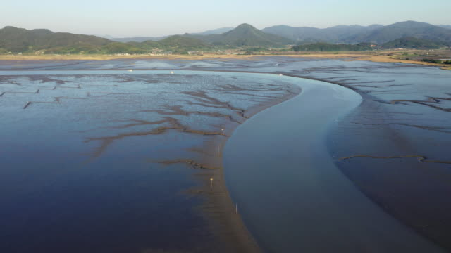 suncheon bay nature reserve (selected as best natural scenery), suncheon, jeollanam-do, south korea - naturwunder stock-videos und b-roll-filmmaterial
