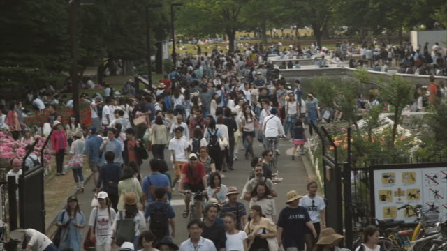 Sunday crowd in Yoyogi Park, Tokyo