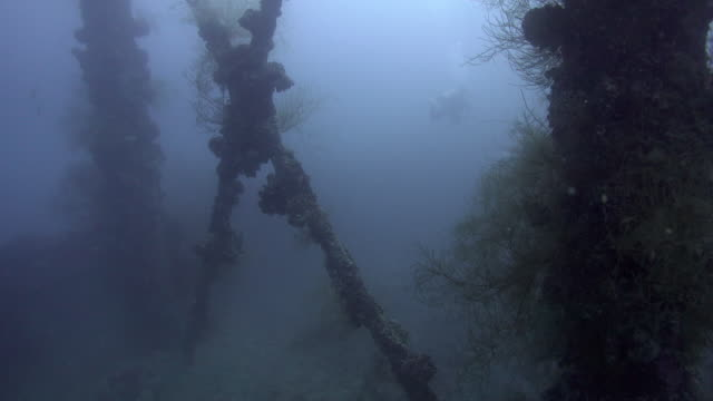 sunken battleship during the world war ii, palau - deep sea diving stock videos & royalty-free footage