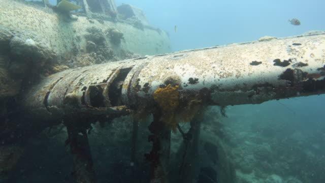 vidéos et rushes de sunken fighter plane during the world war ii, palau - fonds marins