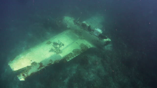 sunken fighter plane during the world war ii, palau - deep sea diving stock videos & royalty-free footage