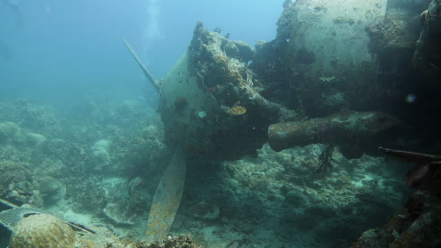 sunken fighter plane during the world war ii, palau - ruined stock videos & royalty-free footage