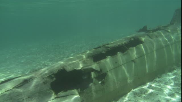 vidéos et rushes de a sunken fighter plane rests on the ocean floor. - épave
