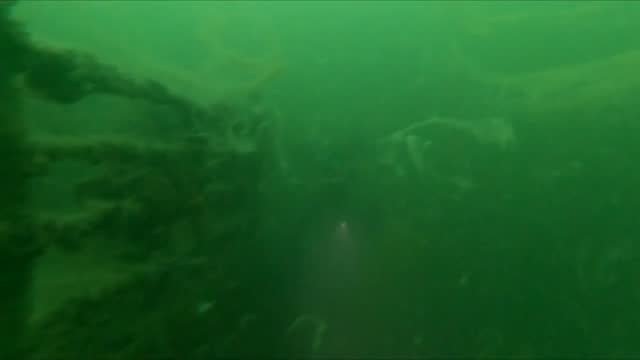 sunken inonu ship is covered in mucilage in sea of marmara, kocaeli, turkey on june 17, 2021. inonu ship that sunk for diving tourism 8 years ago, is... - sea stock videos & royalty-free footage