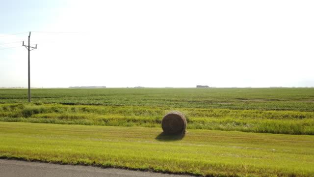 sunlight and bale of hay - 干し草点の映像素材/bロール