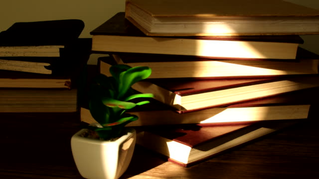 sunlight and stacks of books time lapse - collection stock videos & royalty-free footage