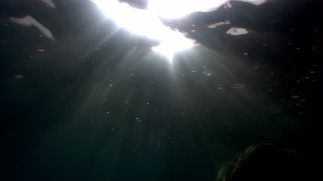 Sunlight beams through rippling water surface. Available in HD.