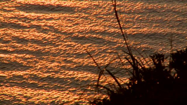 MS Sunlight illuminated at surface of sea / Alcudia, Mallorca, Spain