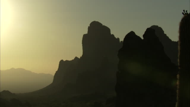 sunlight in desert mountains - cactus silhouette stock videos & royalty-free footage