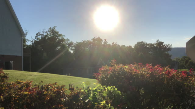 sunlight mowing birdsong and home yards amid the 2020 global coronavirus pandemic - moody sky stock videos & royalty-free footage