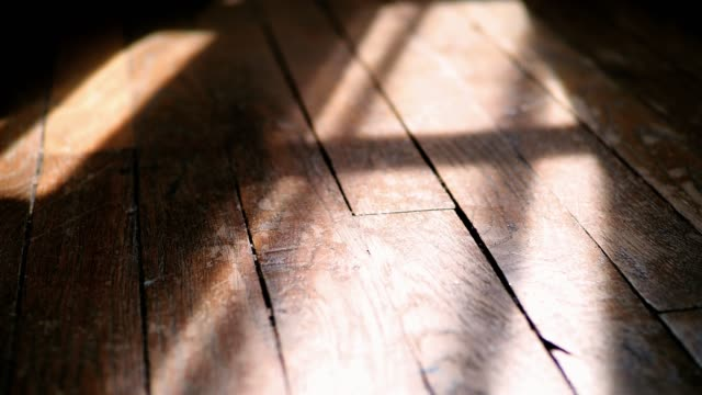vidéos et rushes de sunlight on a wooden floor - parquet
