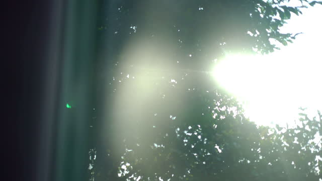 sunlight on windows at home - brightly lit stock videos & royalty-free footage