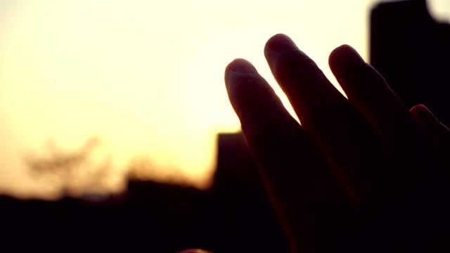 vidéos et rushes de lumière du soleil en passant par les doigts - membres du corps humain