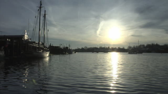 vidéos et rushes de ws sunlight reflection on water in harbor with several moored sailboats/ usa - groupe moyen d'objets