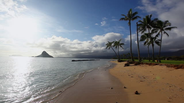 vidéos et rushes de ws sunlight reflects in water at beach / kualoa, hawaii, united states - îles hawaï