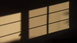Sunlight shades motion on the wall 4K DCI