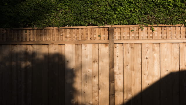 vídeos de stock e filmes b-roll de sunlight shades motion on wood wall 4k dci - com sombra