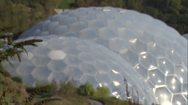 sunlight shines on the honeycomb-like dome of the eden project in cornwall. - kuppeldach oder kuppel stock-videos und b-roll-filmmaterial