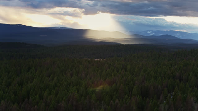 vídeos de stock e filmes b-roll de sunlight shining through clouds on kootenai national forest - aerial - montana
