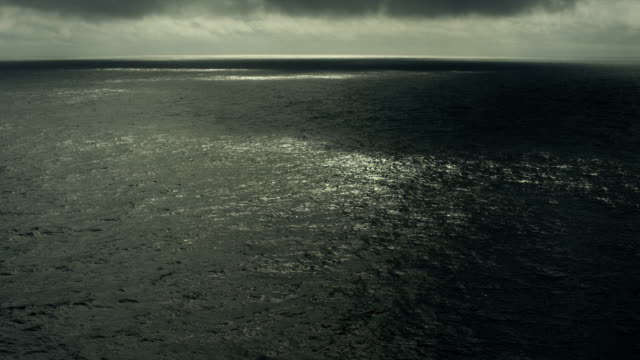 Sunlight Sparkles On Surface Of North Pacific Ocean