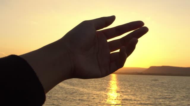手の木漏れ日 - 逆光点の映像素材/bロール
