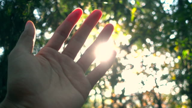 sunlight through human fingers - human finger video stock e b–roll
