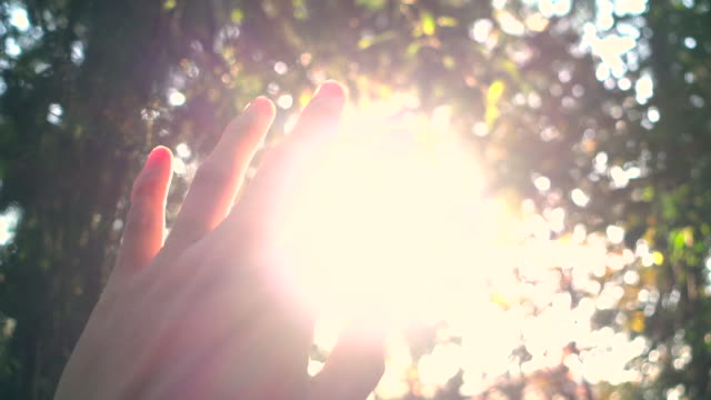 sunlight through human fingers - contrasts stock videos and b-roll footage