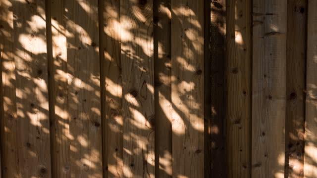 stockvideo's en b-roll-footage met zonlicht bomen tinten vertaling motion 4k - schaduwe