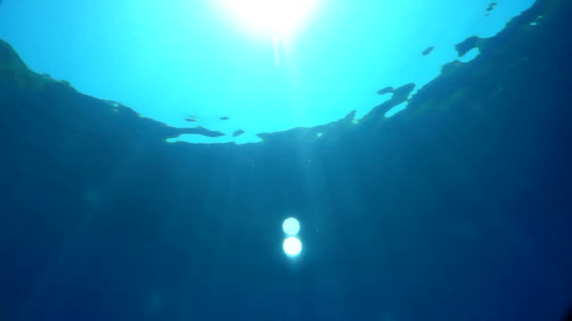 sunlight under the surface of azure water
