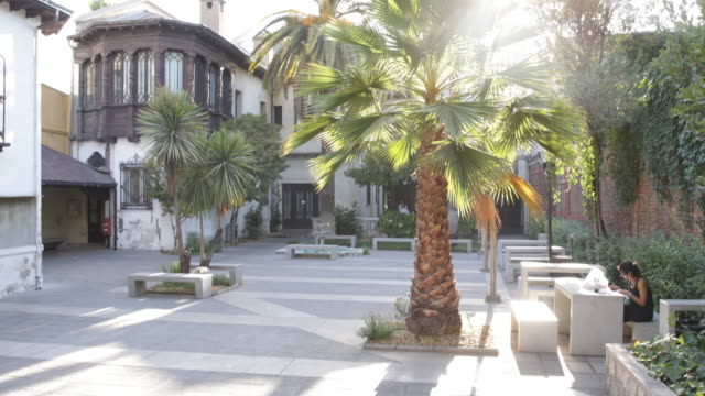 Sunny backyard with palms in the university Alberto Hurtado in Santiago de Chile Chile The university is named after Father Alberto Hurtado a famous...