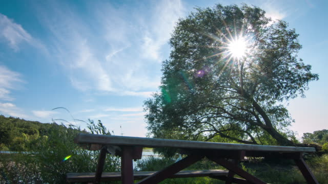 sunny day at the lake time lapse - spiral staircase stock videos & royalty-free footage
