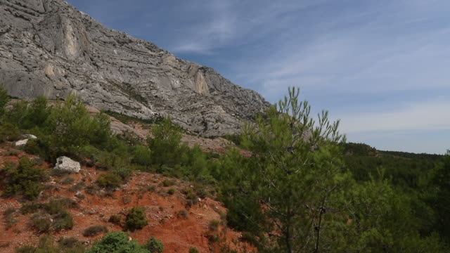 vidéos et rushes de sunny day in the forest near the sainte victoire mountain in provence - frolow