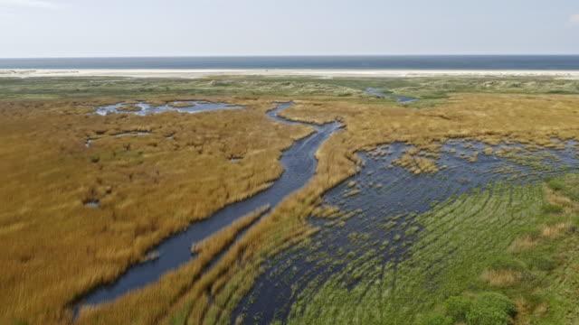 AERIAL sonnigen Salzwiesen entlang einer Küstenlinie