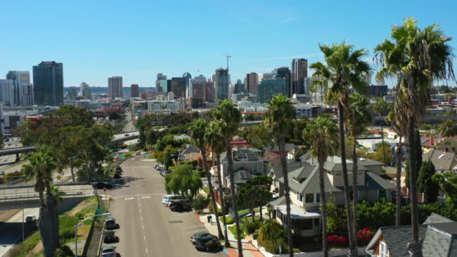 sunny san diego palm trees aerial view - san diego stock videos & royalty-free footage