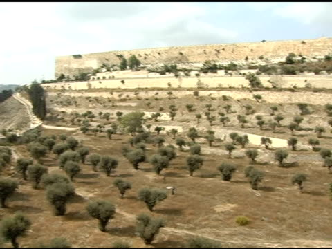 sunny valley below the wall of jerusalem - jerusalem stock videos & royalty-free footage
