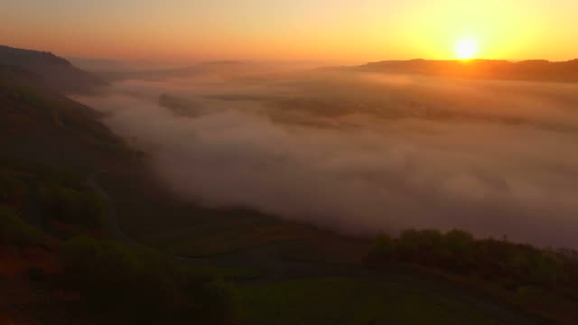 Sunris and morning fog over Moselle Valley near Minheim, Rhineland-Palatinate, Germany