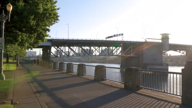 sunrise along the tom mccall waterfront park trail - fiume willamette video stock e b–roll