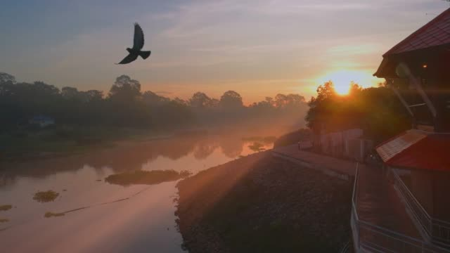Sunrise And Bird Fly Over River Shot By Smart Phone
