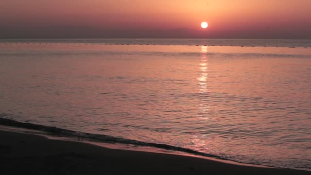 sunrise and birds in mediterranean beach - horizon over water stock videos & royalty-free footage
