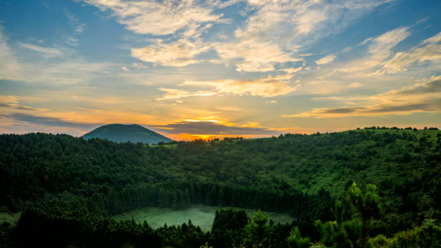 sunrise at abuoreum (cinder cone) coniferous forest in jeju island - kegel stock-videos und b-roll-filmmaterial